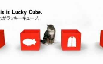 Lucky Cube Uniqlo : Maru le chat star vous fait gagner des cadeaux