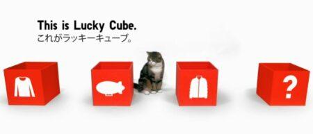uniqlo-maru-lucky-cube-lolcat