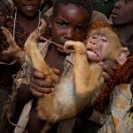 Un singe terrorisé par des enfants. Jabruson : Primal fear.