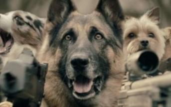 Le dernier chat sur terre attaqué par des chiens armés [Clip WTF de SAF]