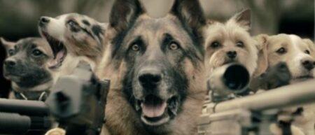 Des chiens armés de flingues. Clip SAF Last cat on earth.