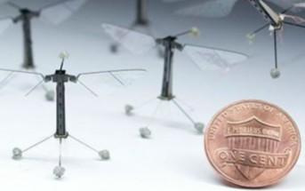 Le 1er vol d'un robot insecte de la taille d'une mouche [Drone miniature]
