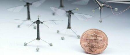 Robot insecte volant de la taille d'une mouche - drone miniature - cover