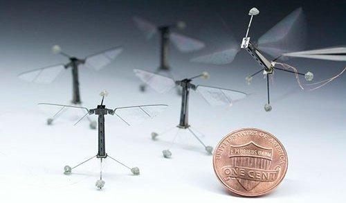 Robot insecte volant de la taille d'une mouche - drone miniature