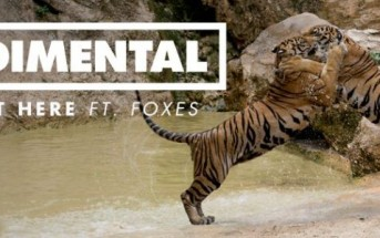 Clip Right Here de Rudimental : Tigres, kung fu et gangs en Thaïlande