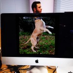 desk-safari-03-chien