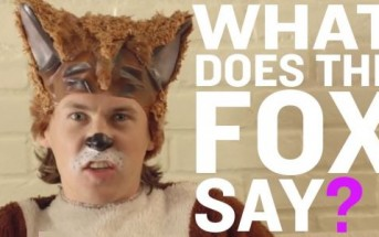 The Fox : le clip délirant du duo comique norvégien Ylvis [WTF]
