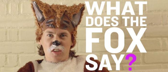 """Ylvis - """"The Fox"""" : le clip absurde et délirant de la chanson du renard. Quel est le cri du renard ?"""