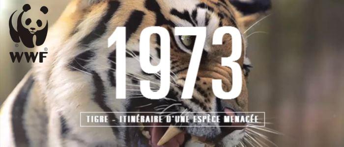 """wwf france fête ses 40 ans avec la vidéo """"change is already there"""""""