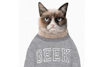 La technologie au service du bien être des chats [Lolcat Geek]