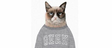 Lolcat Geek : la technologie au service du bien être des chats - grumpy cat