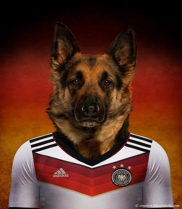 chien en maillot de foot cm2014 : Allemagne berger allemand