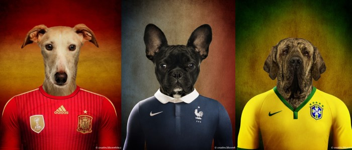 Des chiens en maillot de foot pour le coupe du monde 2014