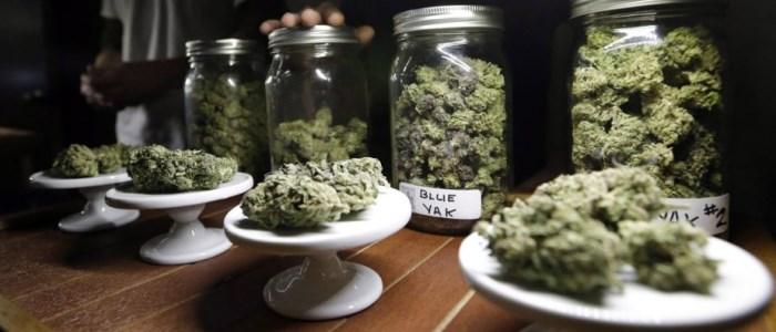 Légalisation de la vente de marijuana (cannabis) au Mexique