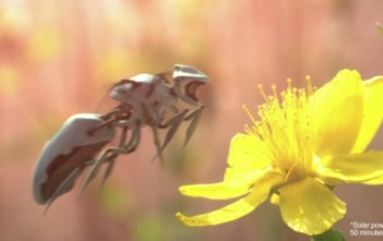 newbees : abeille robot de greenpeace