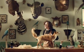 Des animaux empaillés chantent le lion est mort ce soir [pub granola]