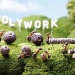 photos-vie-fantastique-fourmis-ant-tales-10