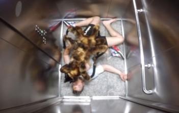 Chien déguisé en araignée géante dans un ascenseur pour une caméra cachée