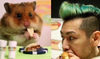 concours hot-dog tiny hamster vs homme