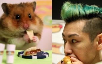 Un hamster défie un champion de mangeage de hot dogs