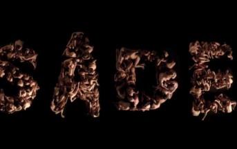 Le clip érotique du Musée d'orsay pour l'expo Sade