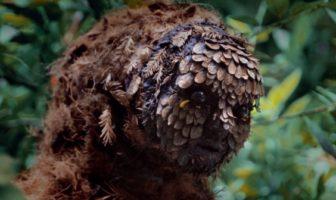 L'étrange homme de la forêt du clip metronomy, the upsetter