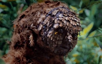 Metronomy, The Upsetter : l'étrange homme de la forêt [clip]