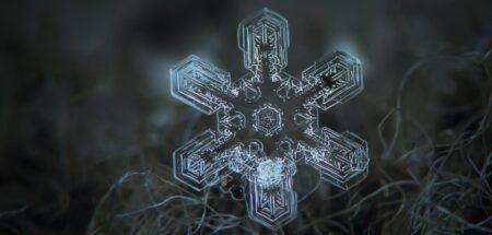 flocon de neige, snowflake