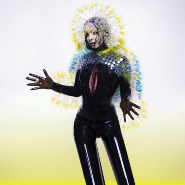 Bjork : Vulnicura -pochette cover album