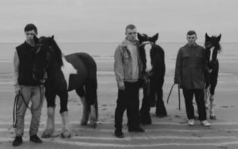 "2 superbes clips issus de l'album ""Creatures"" de Rone"