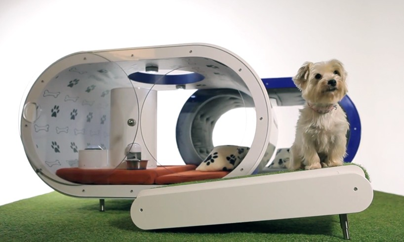Samsung Dream Doghouse : la niche high-tech pour chien - Crufts 2015