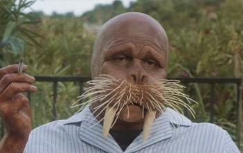 the walrus : l'homme morse