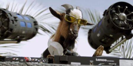 chevre DJ Ichette - La barbichette
