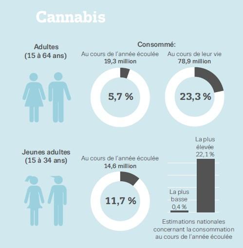 la consommation de cannabis en Europe