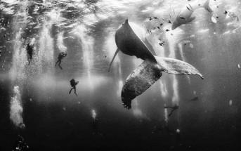 Les 10 photos gagnantes du concours National Geographic Traveler 2015