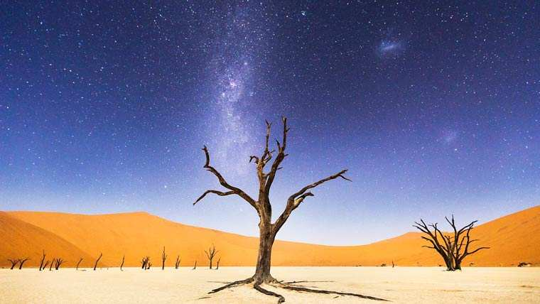 A Night at Deadvlei - Beth McCarley
