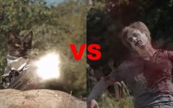 Vidéo WTF : les chats déclarent la guerre aux Zombies