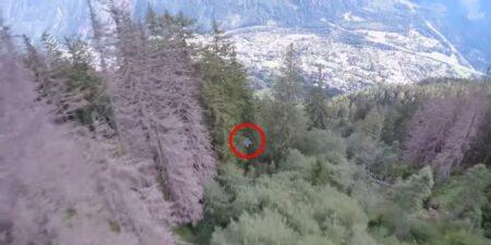 Graham Dickinson slalome entre les arbres en wingsuit