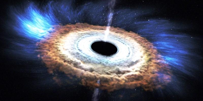 un trou noir absorbe une étoile