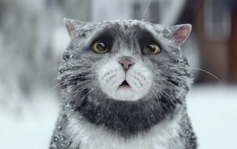 Pub de Noël 2015 : le chat maladroit mais attachant de Sainsbury