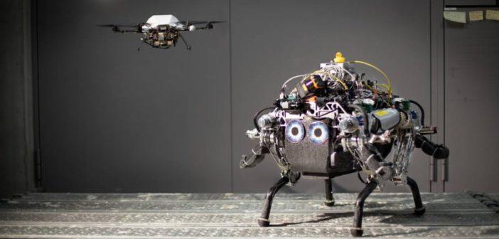 Une étonnante collaboration entre un drone et un robot