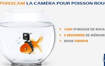 La PoissCam, la 1ère caméra pour poisson rouge !
