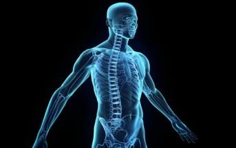 14 faits incroyables et amusants sur le corps humain : le n° 6 explique beaucoup de choses…