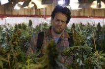 """Alexis Martin contraint de cultiver du cannabis dans le film """"Les mauvaises herbes"""""""