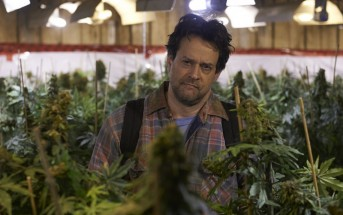 Les mauvaises herbes : comédie québecoise sur le cannabis