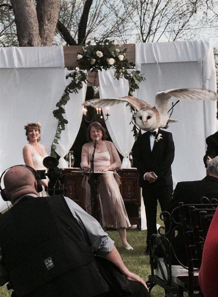 photo-prise-au-bon-moment-27-mariage-chouette