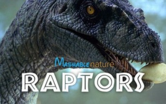 Parodie : Jurassic Park remixé en documentaire animalier