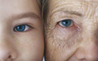 Sur la route de l'immortalité ? Les prochaines avancées de l'anti-âge