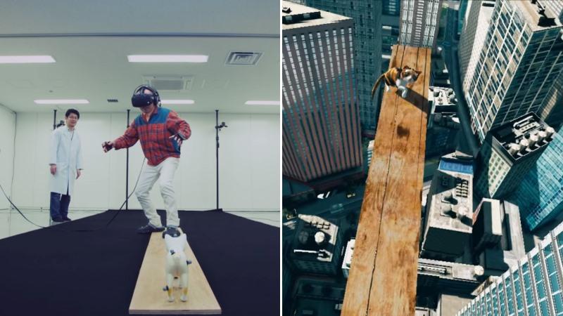 VR Zone : sauvez un chaton en réalite virtuelle