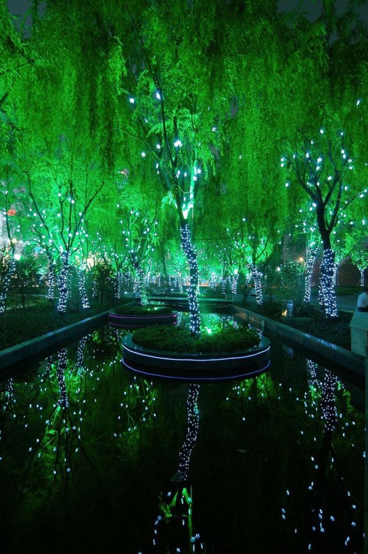 La forêt magique de Shangaï, Chine